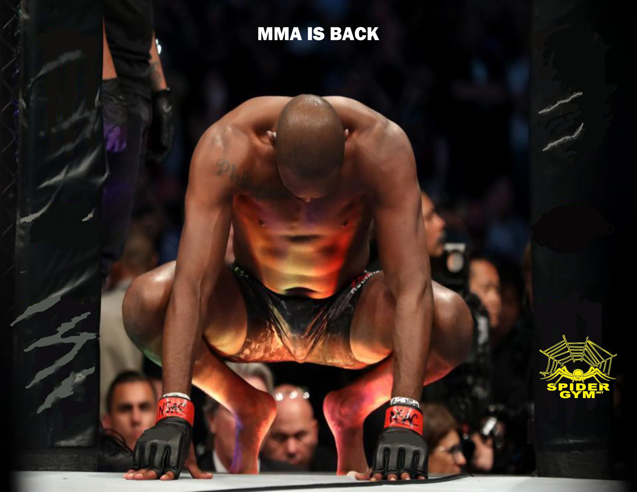 MMA IS BACK